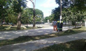 Prefeitura realiza serviços de manutenção em praça na entrada da sede social